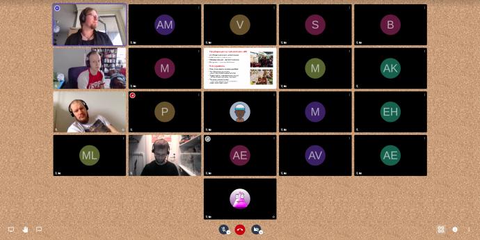 Kuvakaappaus vasemmistonuorten piiritapaamisesta videoyhteydellä.